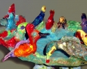 Bi-Colored Chachalacas and Crested Gallinules